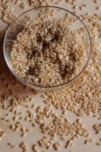 conosciamo i cereali senza glutine: il riso (integrale)